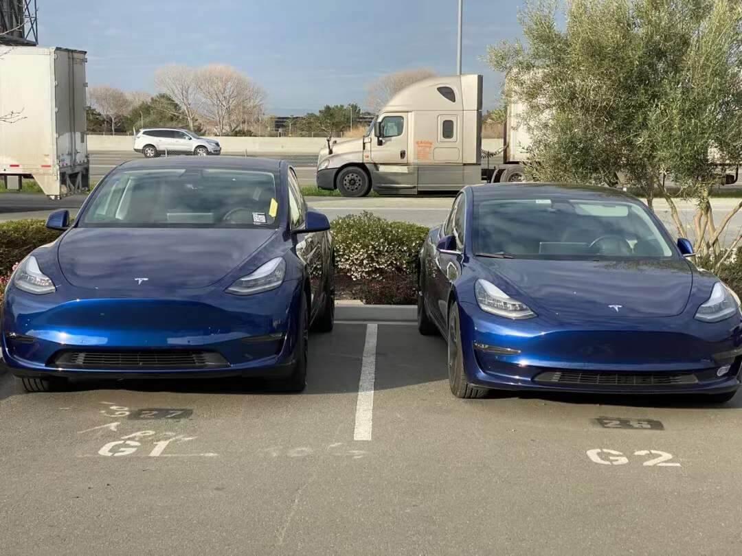 特斯拉Model Y和Model 3 有哪些区别?哪个更好?
